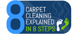 Carpet Cleaning Explained in 8 Steps