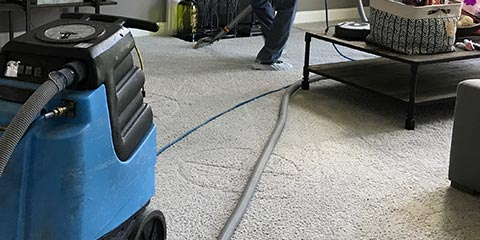 Wall to Wall Carpet Steam Cleaning