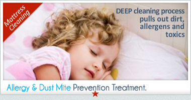 dust and mattress cleaning treatment